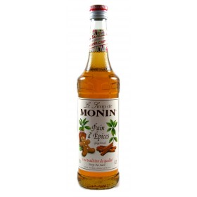Sirop Pain d'épices - Monin
